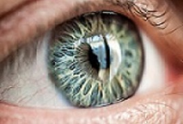 Распознавание по радужной оболочке догоняет другие виды биометрии